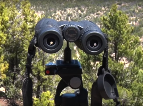 Best Hunting Binoculars Under 200 Review